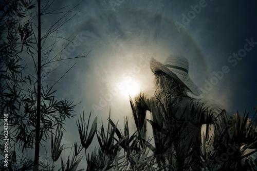 A lone Scarecrow in Halloween night Fototapeta