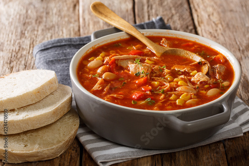 Delicious American cuisine Brunswick stew made from meat with vegetables, spices and barbecue sauce close-up. horizontal