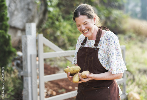 Happy woman collecting potatoes at a farm