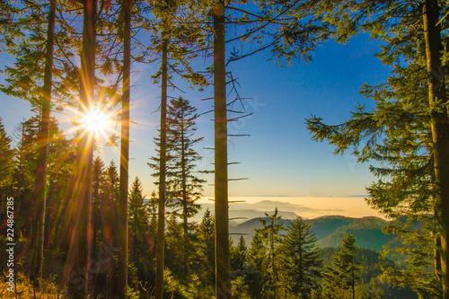 Traumhafter Schwarzwald Schwarzwaldhochstrasse