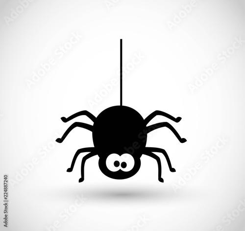 Fotografia Spider vector icon