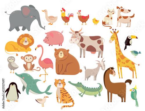 Stampa su Tela Cartoon animals