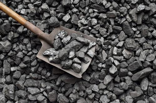 Canvas Shovel and coal