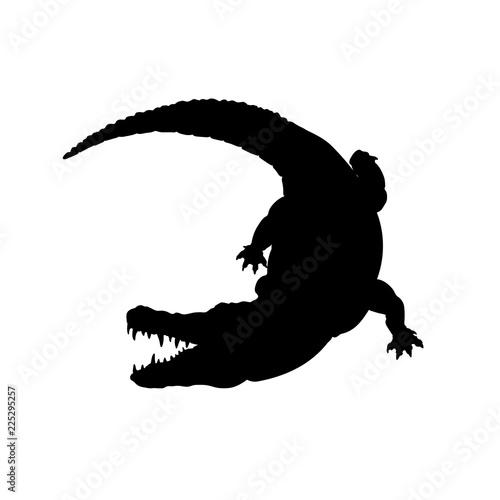 Fototapeta premium Czarna sylwetka aligatora mississippi. Na białym tle obraz krokodyla na białym tle. Zwierzę z Ameryki Północnej. Ilustracji wektorowych