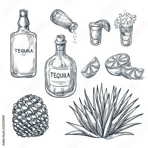 Tequila bottle, shot glass and ingredients, vector sketch Fototapeta