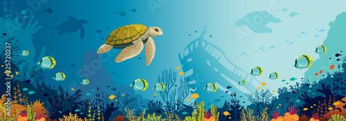 Fototapeta premium Podwodna przyroda - żółw, rafa koralowa, ryby, zatopiony statek, morze.
