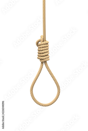 Slika na platnu 3d rendering of a hangman's noose made of natural beige rope hanging on a white background