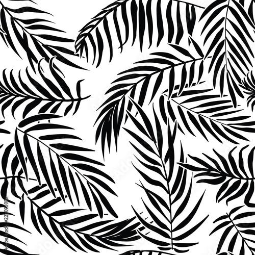 Obraz na płótnie Liście palmowe czarne na białym tle