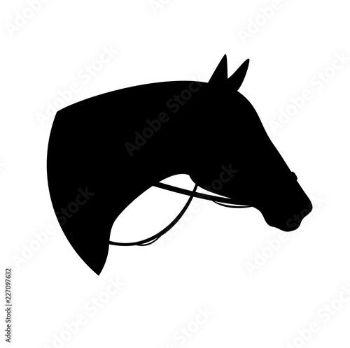 Obraz na plátne horse with bridle - black vector silhouette of animal head