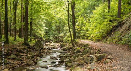 Foto Ilsetal, Harz