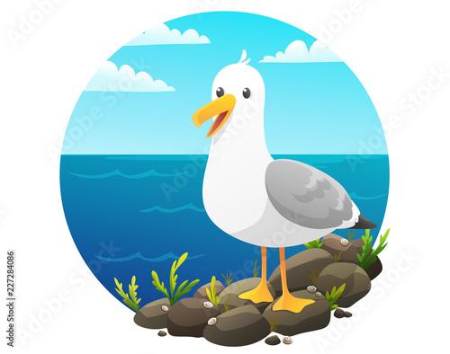 Carta da parati Cute seagull on rock cliff with seaweed and shells