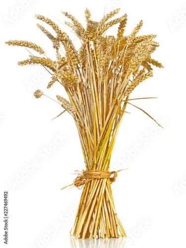 Valokuva Weizen