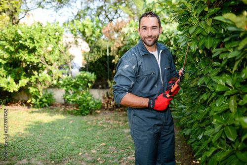 handsome young man gardener trimming hedgerow in a garden park outdoor Fototapet