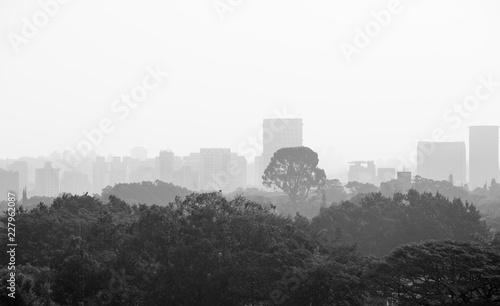 Cityscape of Sao Paulo on a foggy day.