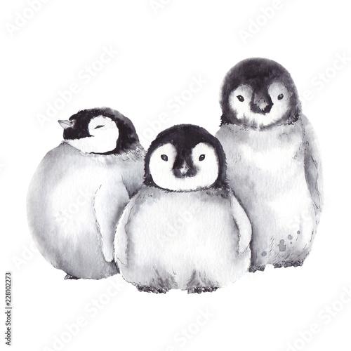 Canvas Print Cute baby penguin family