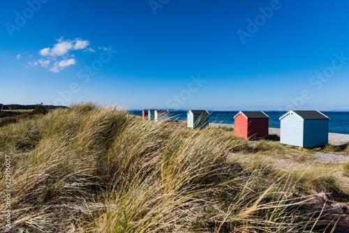 Fotografie, Tablou Strandhäuser von Findhorn