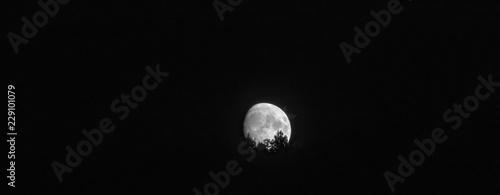 Canvas Print Moonrise over Lewis Peak, near North Ogden, Utah