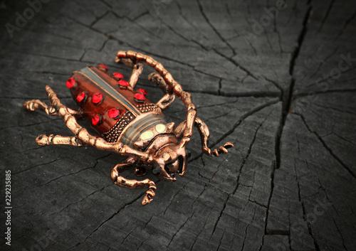 Billede på lærred Jewelry bug brooch with gemstone on black wood section background, copy space, s