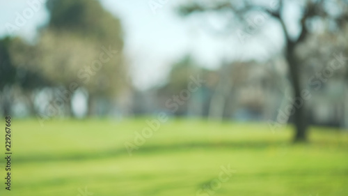 Photo Out of focus background plate of grass field in beautiful park in suburb