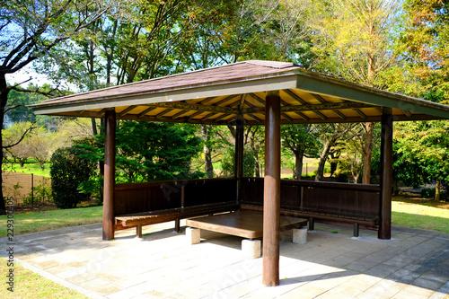 Cuadros en Lienzo 公園の休憩所