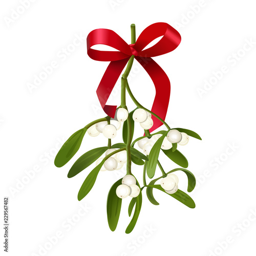 Carta da parati Mistletoe