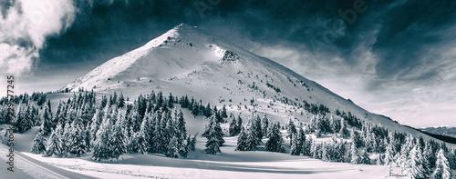 Fototapeta premium Piękny zimowy krajobraz Karpat. Petros szczyt pokryty śniegiem.