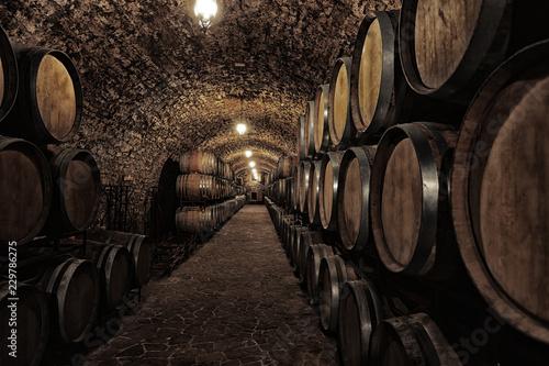 Fotografering Wine cellar interior with large wooden barrels