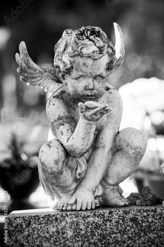 Fotografia Closeup of stoned angel on tomb in cemetery