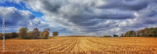 Fotografie, Obraz Farmfield rows & clouds
