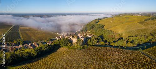 Photographie Aerial view Bordeaux Vineyard at sunrise, Entre deux mers, Langoiran, Gironde