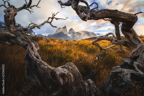 Torres del Paine National Park Fototapet