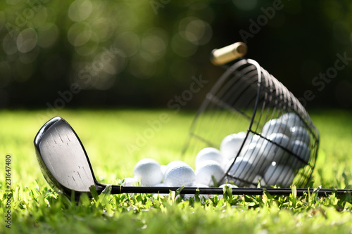 Golf club and golf balls in basket on green grass for practice