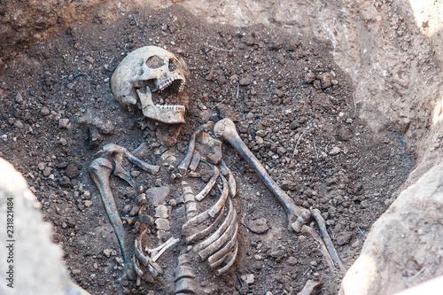 Obraz na plátně Skeleton soldier of the Second World War