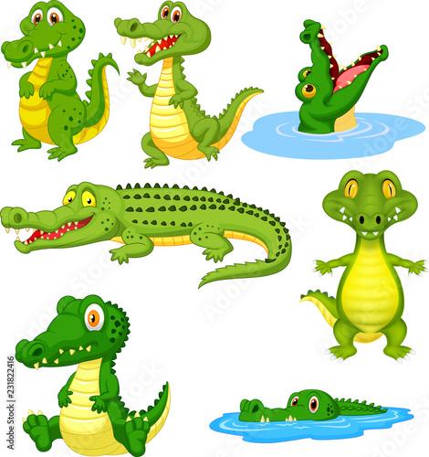 Fototapeta premium Kreskówka zestaw kolekcja zielony krokodyl