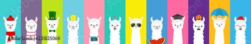 Llama alpaca set. Cute funny cartoon lama character. All seasons. Happy Valentines Christmas St Patrick day Easter Egg Bird Chicken Umbrella. Santa hat, sun Flat design Colorful background.