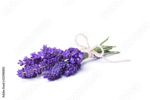 Fototapeta premium Lawenda - Mały bukiet kwiatów lawendy