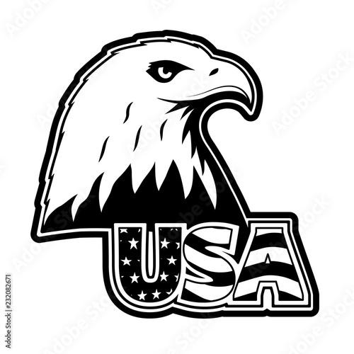 Photo Bald eagle symbol of north america.