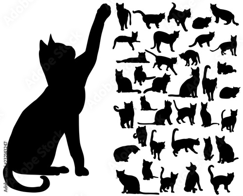 Stampa su Tela vector isolated silhouette cat set