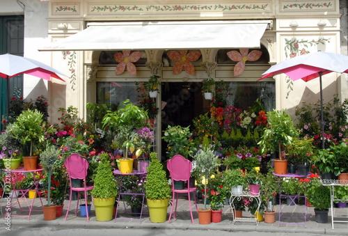 Fleurs et plantes colorées chez un fleuriste, pots de couleurs, ville de Chinon, département d'Indre-et-Loire, France