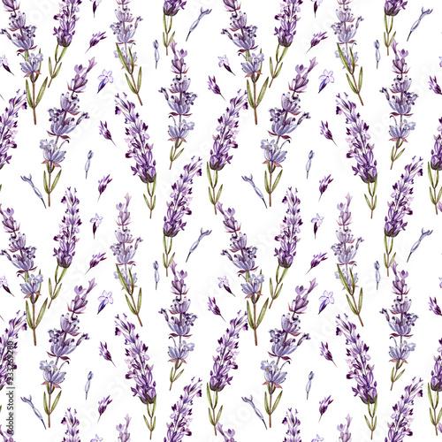 Fototapeta Watercolor pattern with Lavender. Hand painting. Watercolor.