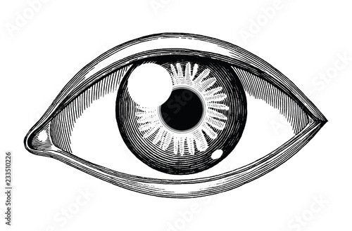 Human eye reference hand draw vintage engraving isolated on white background