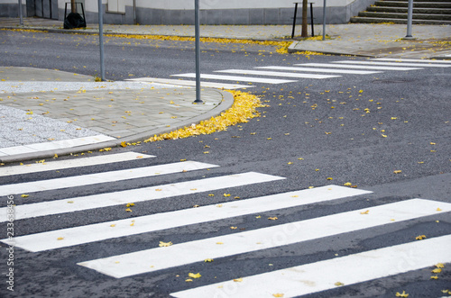 Tablou Canvas Fallen leaves on pavement and crosswalk