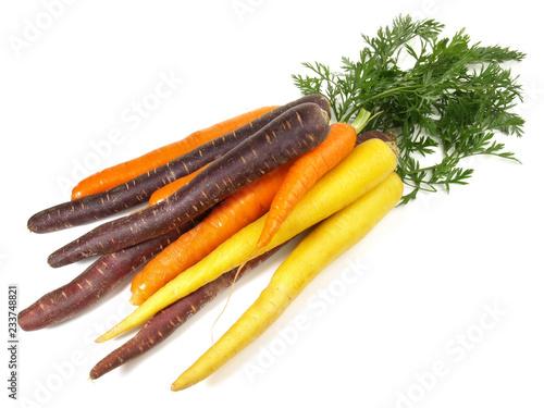 Bunte Karotten im Bund - Freigestellt