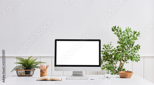 White wall desktop and computer screen white desk vase of plant and book object.