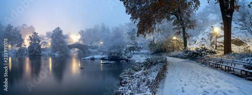 Fotografia Gapstow bridge during winter, Central Park New York City. USA