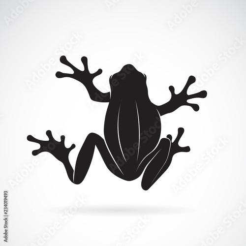 Fototapeta premium Wektor wzór żaby na białym tle. Płaz. Zwierzę. Ikona żaby. Łatwe edytowanie warstwowych ilustracji wektorowych.