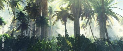 Obraz premium Dżungla we mgle rano, palmy w mgle, renderowania 3d