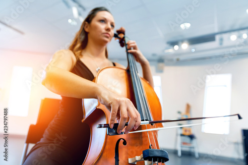 Fotomural Woman playing cello