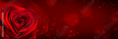 Valentine Invitation With One Red Rose And Heart Shape Petals