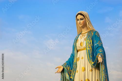 Obraz na plátně Virgin mary statue